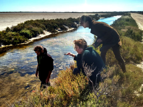 Hugo Fontes, Henriette Waal and Maartje Dros in the Camargue