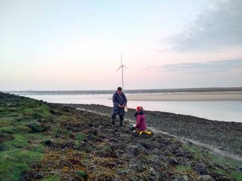 Artist Filip van Dingenen and herbalist Ellen Schoenmakers harvest seaweed in Zeeland (Netherlands), © Atelier LUMA
