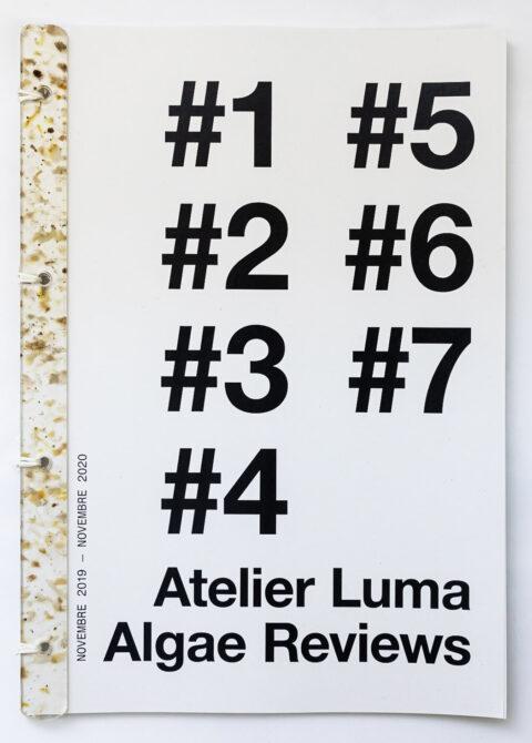 Algae Review, the publication of the Algae Platform, © Adrian Deweerdt