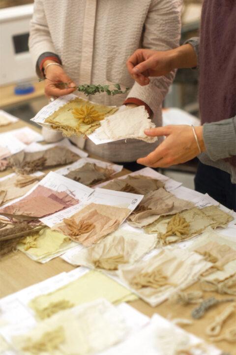 Echantillons de teintures textiles à base de plantes invasives locales., © Joana Luz
