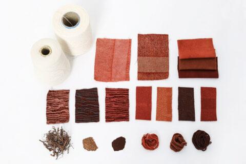 Du fil au tissage, de la plante à la teinture, recherches matière et couleur pour la gamme de tissus d'ameublement pour la Tour LUMA., © Adrian Deweerdt