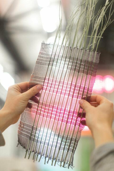 Weaving tests using rushes, © Atelier LUMA