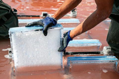 Cristallisation du sel dans des supports conçus pour une application architecturale, © Adrian Deweerdt