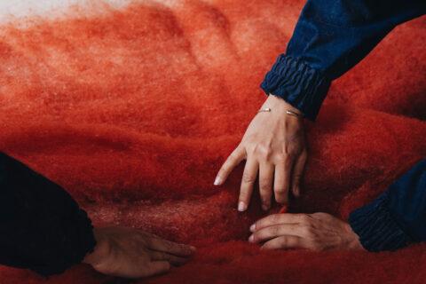 Nappe de laine Mérinos d'Arles, cardée et teinte à la Filature Terrade, avant d'être feutrée, © Max Félix