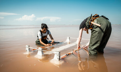 Crystallization tests in the Camargue salt marshes with the designer Karlijn Sibbel, © Adrian Deweerdt
